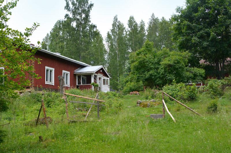 Haapalahdessa puutarhanhoidon tavoitteena on ollut tehdä pihasta luonnonmukainen ja vaalia olemassa olevia perinnekasveja.