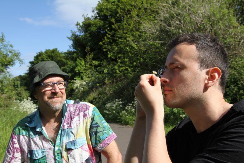 Gavin Ballantyne laskee siitepölyhiukkasia orapihlajan kukalta. Graham Stone seuraa vierestä.